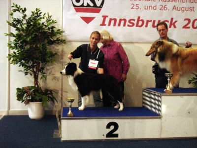 Internationale Hundeausstellung Innsbruck 26.08.2007
